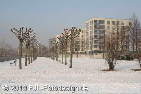 Winterimpressionen 2010
