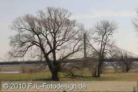Kölnpfad - Etappe 4