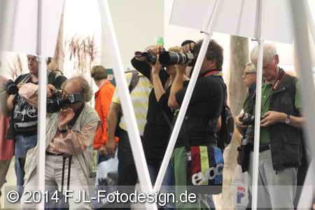 photokina 2014 (Donnerstag)