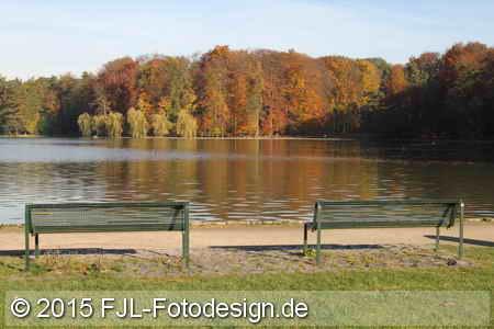 Herbst im Kölner Stadtwald