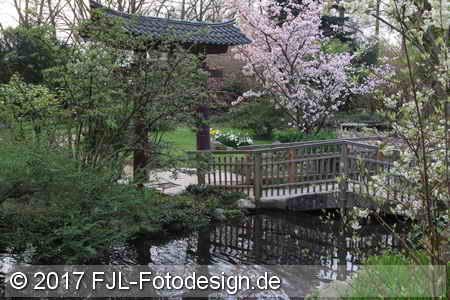 Japanischer Garten am 31. März 2017