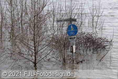 Hochwasser in Köln-Sürth