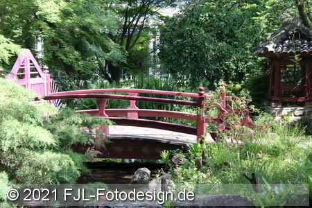 Japanischer Garten im Mai 2021
