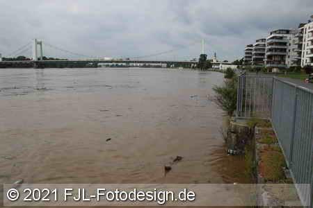 Rhein-Hochwasser 2021